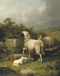 Paysage avec moutons: sheep in an extensive landscape