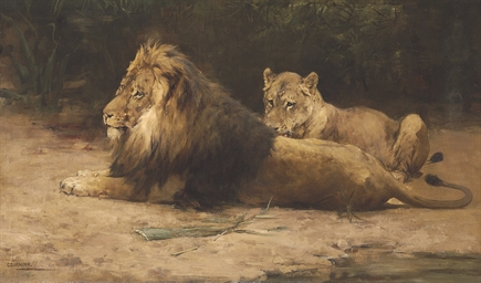 Lion and Lioness at Rest