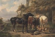Horses outside a Stable