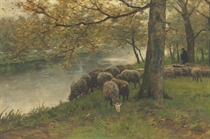 Sheep Watering by a River
