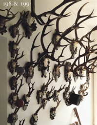 A COLLECTION OF TEN DEER ANTLE