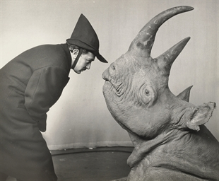 Dali and Rhinoceros, 1981