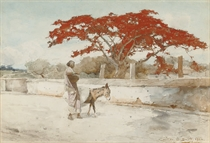 A woman with a donkey walking beneath a flame tree, India