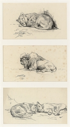 Studies of lionesses and a bis
