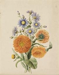 Bouquet d'asters bleus et de s