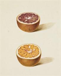 Deux demi-oranges sanguines