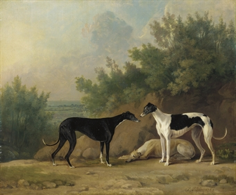 Three greyhounds in an extensive landscape