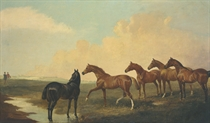 Horses in an extensive landscape with figures beyond