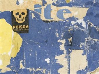 Rue du poison
