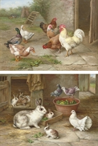 Pecking order; and By the rabbit hutch