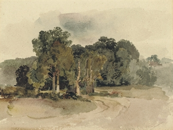 A copse in an open landscape