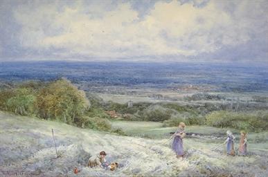 In a hayfield, near Wantage, O