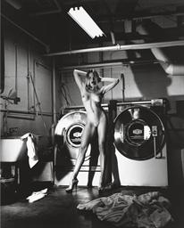 Domestic Nude III: In the Laun