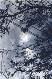 Eclipse II-3