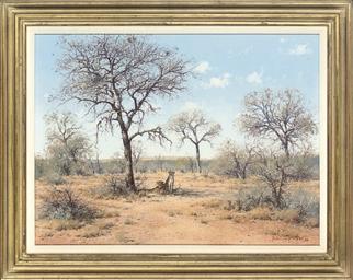 Nsiri Twins, Kruger Park