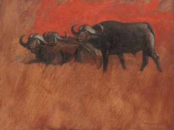 Three Cape Buffalo