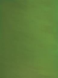 Green Screen #7