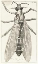 HOOKE, Robert (1735-1802).  Mi