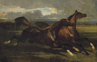 Etalons au galop: Galloping st