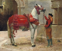 An Andalusian horse and rider