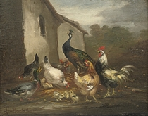 A peacock, hens and a duck in a farmyard; and Ducks and hens in a farmyard