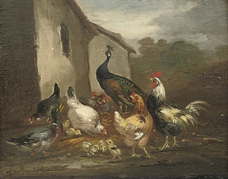 A peacock, hens and a duck in