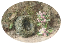Apple blossom and a bird's nest on a mossy bank