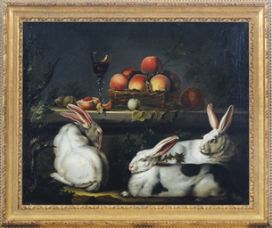 Three white rabbits by a ledge