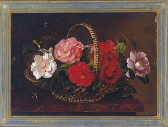 Still life with camellias in a