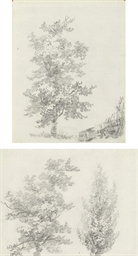 Studies of trees (recto and ve