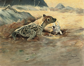 A hyena on the African plains