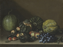 Melons, apricots, grapes and apples on a stone ledge