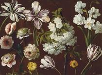 Purple tulips, white flowering prunus, narcissus and pink chrysanthemum