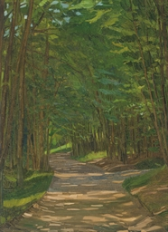 A path in a wooded landscape