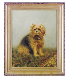 Seated dog on Oriental rug; an