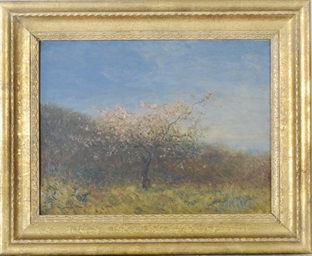 Pecher en fleurs: a peach blos
