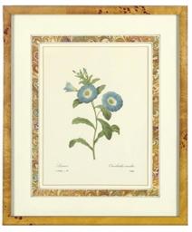 [Botanicals]: Five plates