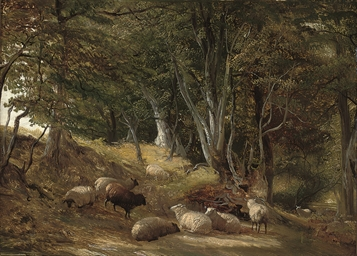 Sheep grazing in a glade