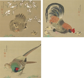 Hen, rooster and pheasants