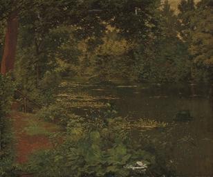 A woodland pool