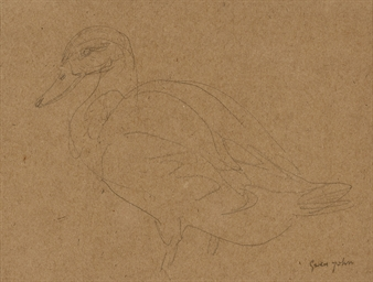 Study of a Duck