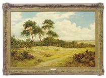 Clouds racing across a heathland landscape