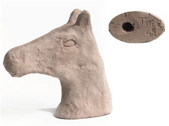 Untitled - A horse head