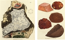 SOWERBY, James (1755-1822) British Mineralogy: or coloured f