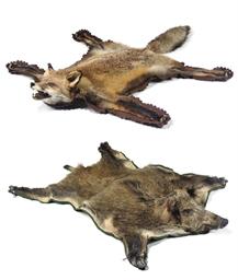 A FOX SKIN RUG