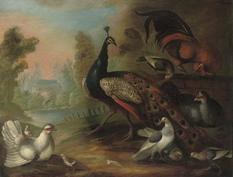 A peacock, hens, fowl and othe