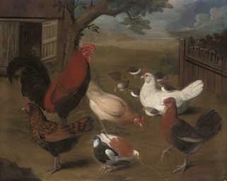 A cockerel, hens and chicks an