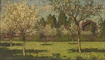 Blossoming May