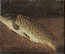 A carp on a ledge