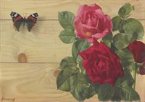 Still life with butterfly and roses